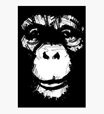 Everything's More Fun With Monkeys Photographic Print