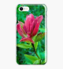 Wildflower Paintbrush iPhone Case/Skin