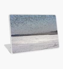 100K+ Series - Swarms In The Distance Laptop Skin