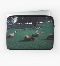 Sheep on One Tree Hill Laptop Sleeve