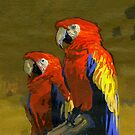 red Macaws by David  Kennett