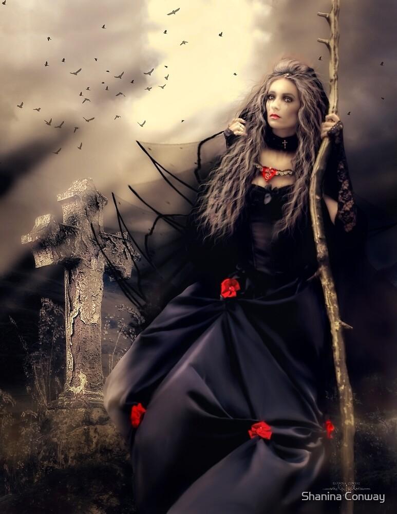 Long Black Veil by Shanina Conway