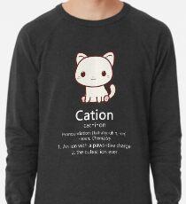 Cute Science Cat T-Shirt Kawaii Cation Chemistry Pawsitive Lightweight Sweatshirt