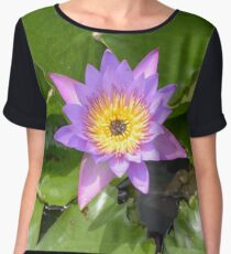 Nymphaea. Plant flower close up Women's Chiffon Top
