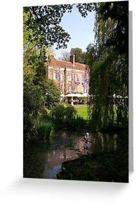 Pashley Manor Gardens by ColinBoylett