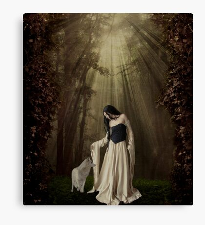 Out of the Shadows... Canvas Print