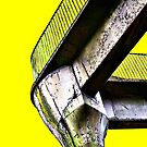 Yellow by Lea Valley Photographic