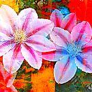 Color Burst by Gail Jones