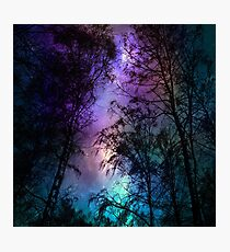 Night sky 1 Photographic Print