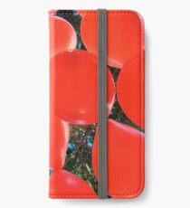 Globus iPhone Wallet/Case/Skin