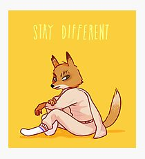 Stay Different Photographic Print