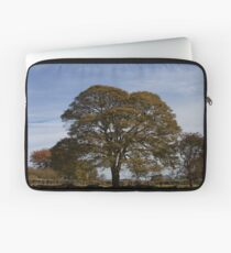 Tree in Derbyshire, UK Laptop Sleeve