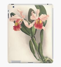 Reichenbachia Orchids illustrated and described by F. Sander 1888 V1-V2 072 iPad Case/Skin