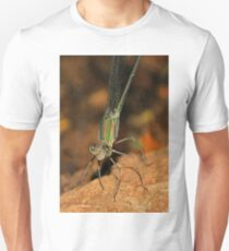 *ZYGOPTERA* - *_Family Calopterygidae_* Demoiselles (Damselflies) Unisex T-Shirt