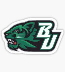 Binghamton U Sticker