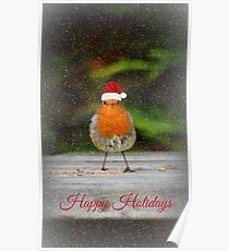 Holiday Robin Poster