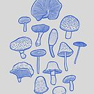 Hand Drawn Mushrooms Collage by Chee Sim