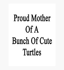Proud Mother Of A Bunch Of Cute Turtles  Photographic Print
