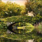 Gapstow Bridge Reflections by Jessica Jenney