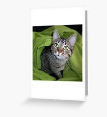 Windows to her soul Greeting Card