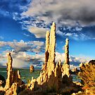 Tufa Shadows by Barbara  Brown