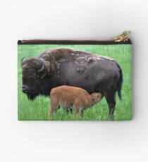 Momma and baby Studio Pouch