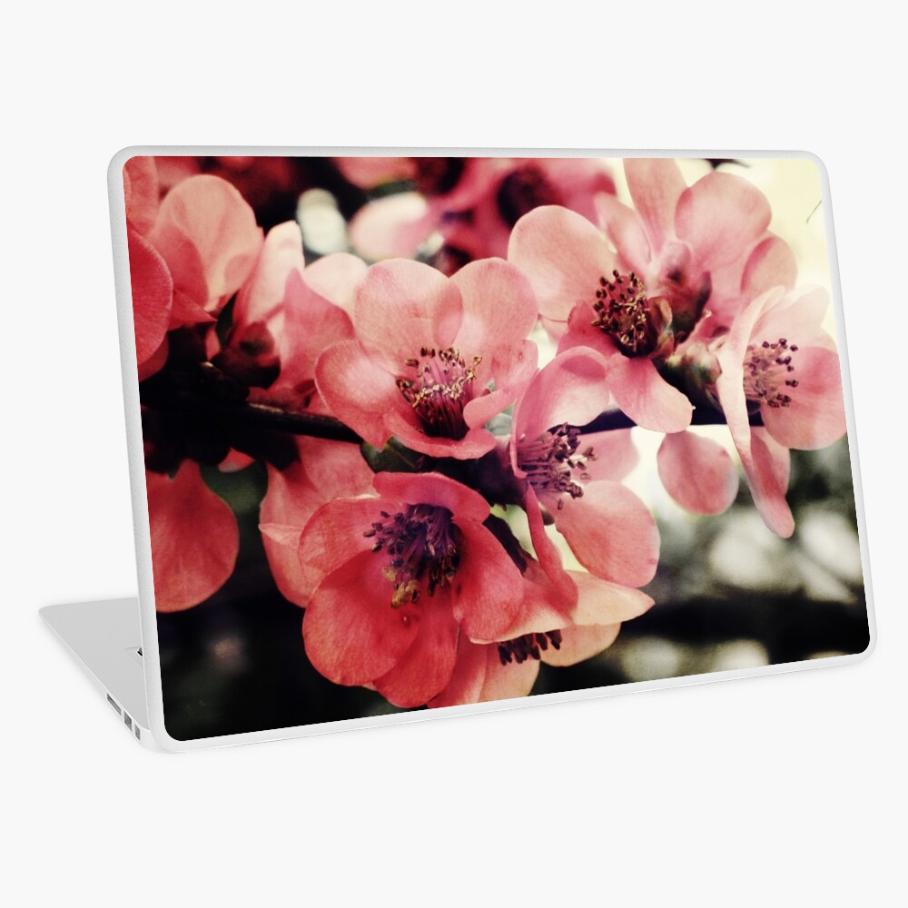 Japanese Quince - Single Branch Laptop Skin