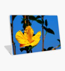 Yellow Hibiscus at State Capitol Laptop Skin