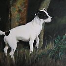 Jack Russell by woods. by Sheila Fielder