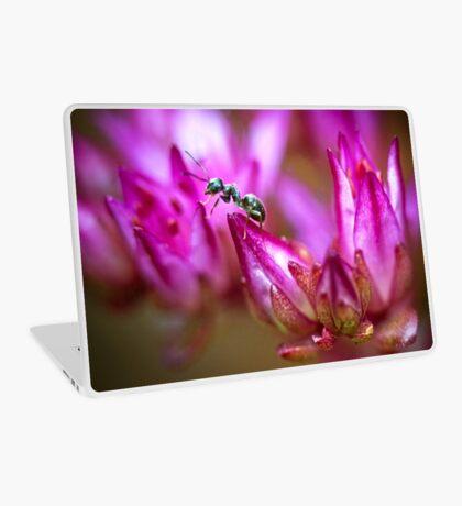 Ant on a Sedum Flower Laptop Skin