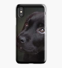 P is for.....Puppy dog eyes iPhone Case