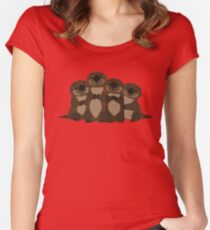 Sea otters Q Women's Fitted Scoop T-Shirt