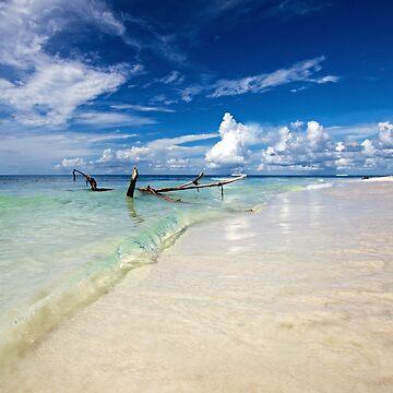 Saona Island, Dominican Republic by cieniu1