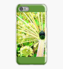 Palomena prasina iPhone Case/Skin