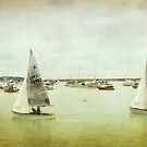 Sailing in Torbay by Lissywitch