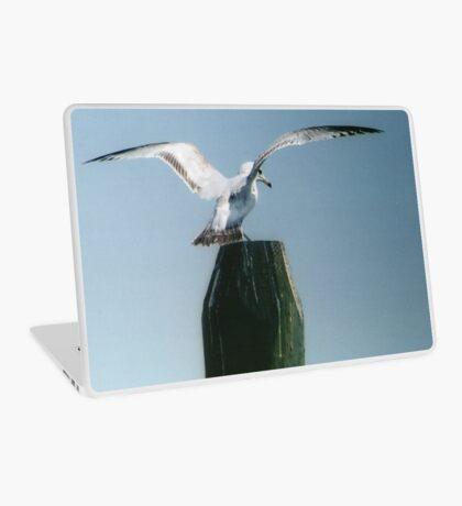 Perching Seagull Laptop Skin