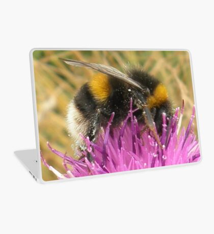 A Scottish Bumble Bee Laptop Skin