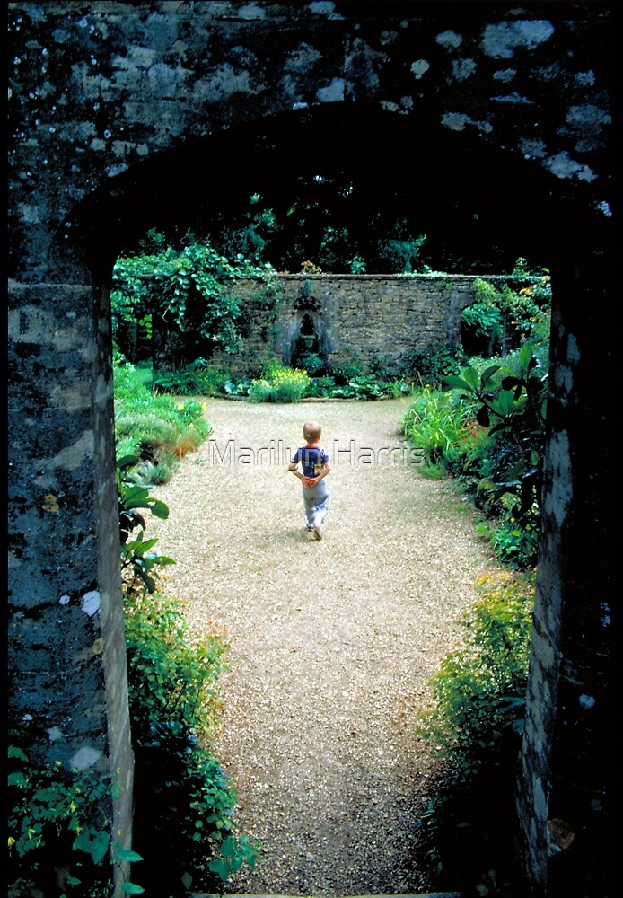 The Boy and the Secret Garden by Marilyn Harris