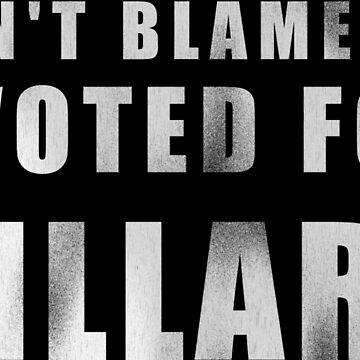 Don't Blame Me, I Voted for Hillary by dzdn