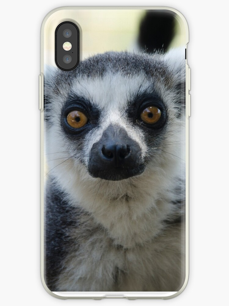 Lemur by Dv-Design