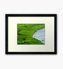 View to Mangroves - Cooktown Framed Print