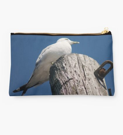 With Crossed Tail Feathers Studio Pouch