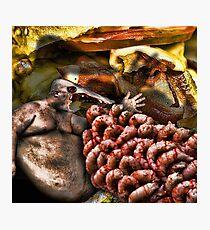 Da Glutton Photographic Print