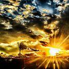sunburst 2... by Wieslaw Jan Syposz