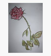 Single Rose Water Colour Photographic Print