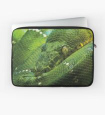 Wild Faces: Green Tree Python Laptop Sleeve