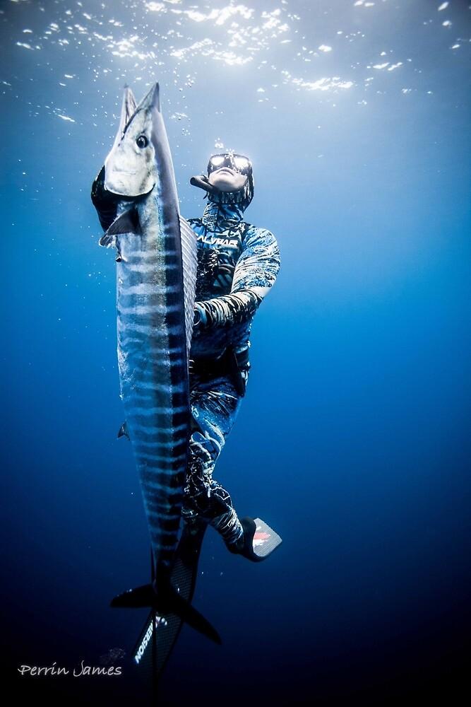 Spearfishing wahoo by tajart