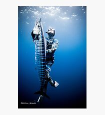 Spearfishing wahoo Photographic Print