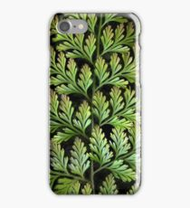Leaf Abstract iPhone Case/Skin