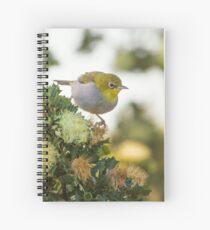 Silvereye at Star Swamp Spiral Notebook